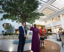 Archbishop of York Opens Springfield